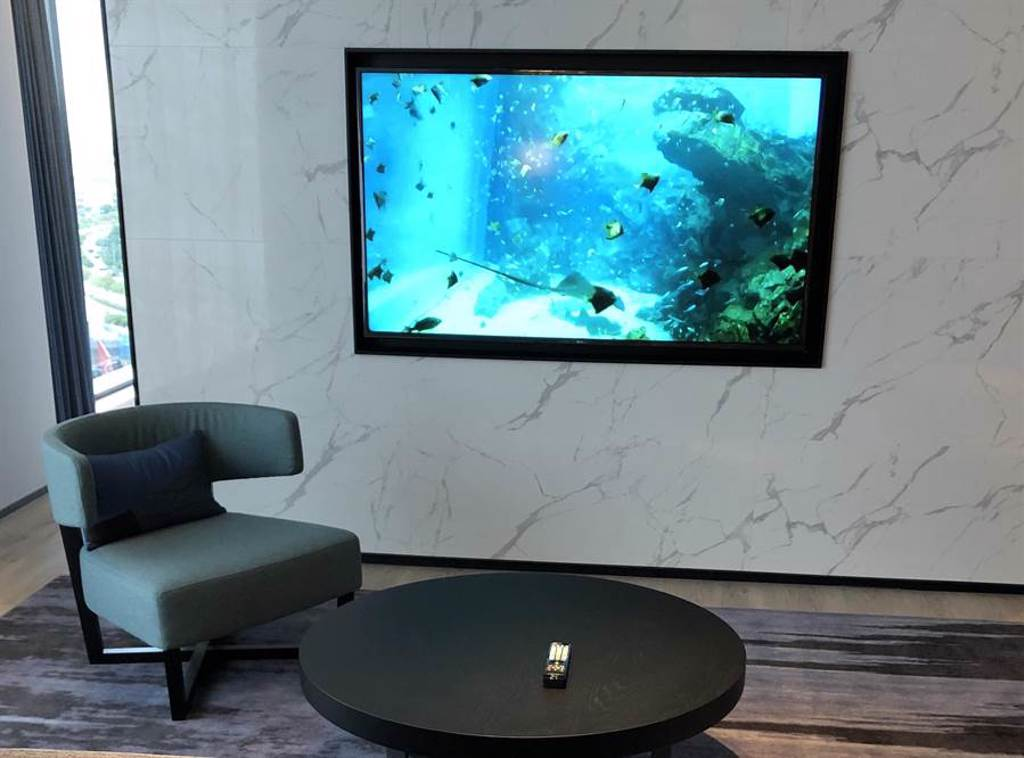 於「COZZI Blu和逸飯店桃園館」客房電視可收看 X Park水族館魚兒悠游的直播畫面。(黃采薇攝)