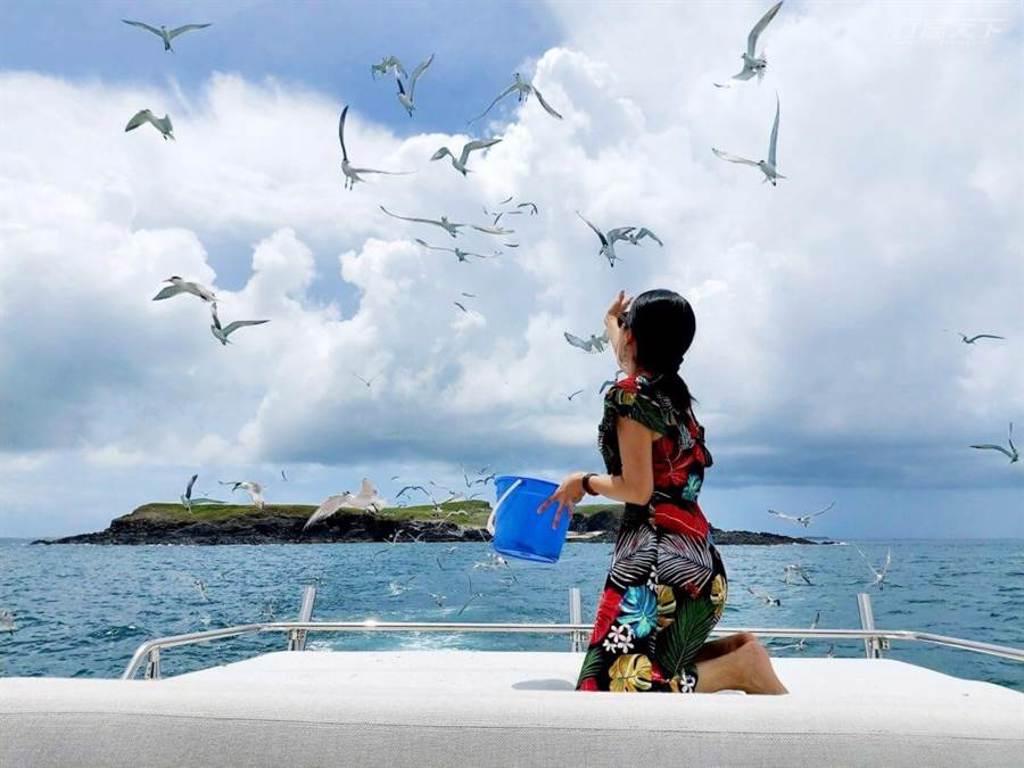 在海上遇見成群海鷗前來覓食,能夠好近好近看見難得奇景。(圖/行遍天下提供)