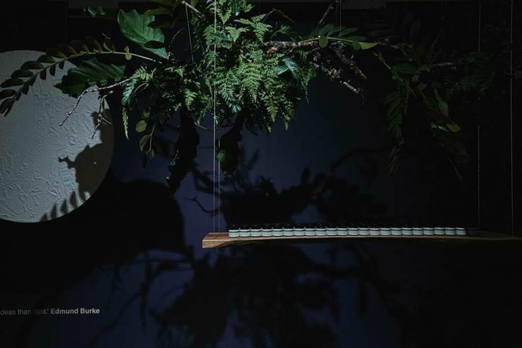 Aesop 夜間深層滋養面膜 主視覺區映入眼簾的是月亮與植物區。(Aesop提供)
