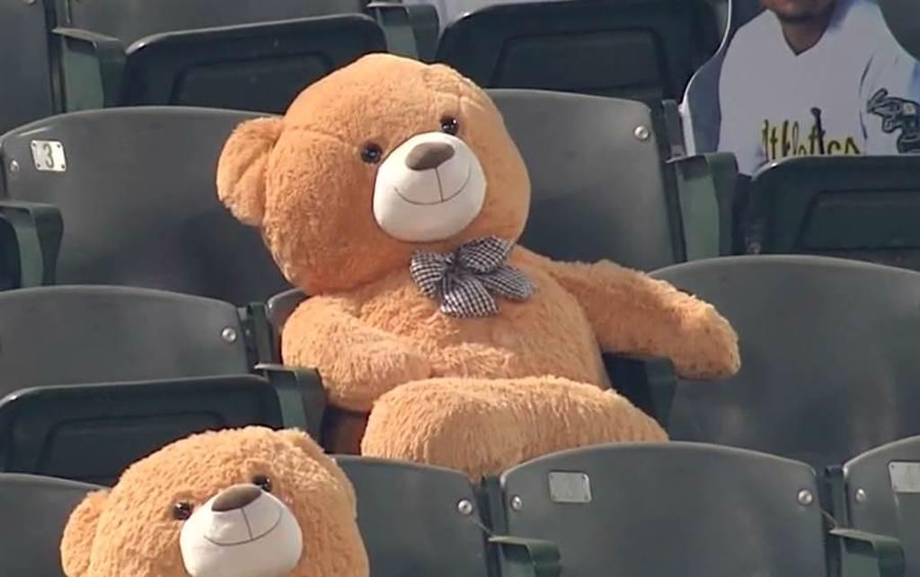 坐在觀眾席的泰迪熊。(截自大聯盟)