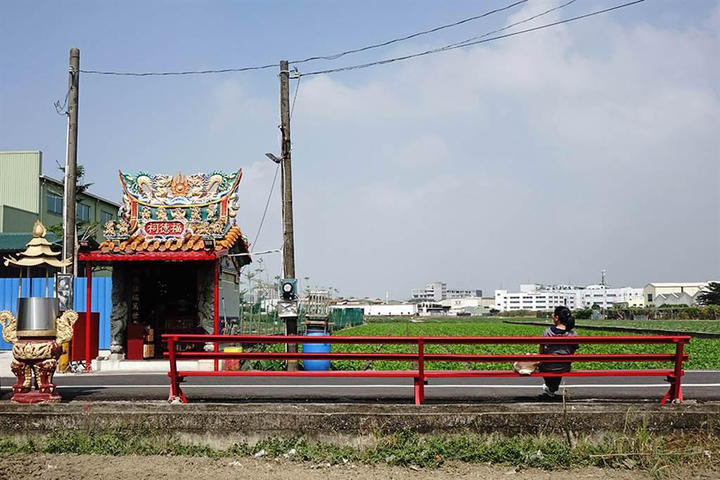 江山里也有一張超大的大寮椅,一次可坐上十多人,是大寮在地製椅公司的傑作,約三五好友一起來坐坐。(攝影/曾信耀)