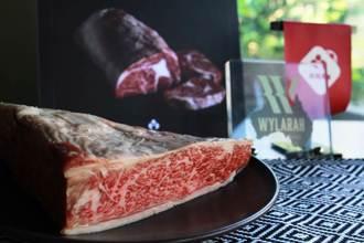 指標級美食達人認證 3人氣餐廳推出Wylarah澳洲奢華和牛大餐