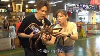 羅時豐進市場買海鮮! 遇調皮嬤玩「象牙蚌」超害羞