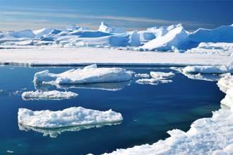 鑽穿南極冰棚深海發現活石 未知生物曝光科學家震驚