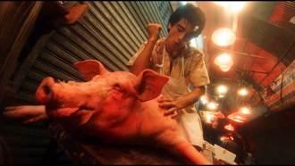 金城武半夜幫豬按摩 王家衛讚男神喜劇節奏好