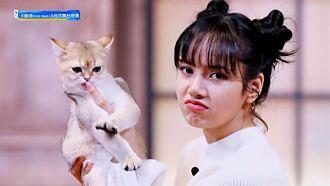 LISA討親親遭愛貓狠拒萌翻 李榮浩自曝因跳舞錯失出道機會