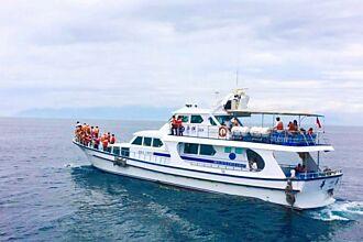 鯨囍饗宴遊頭城 暢覽蘭陽美景與海上賞鯨豚