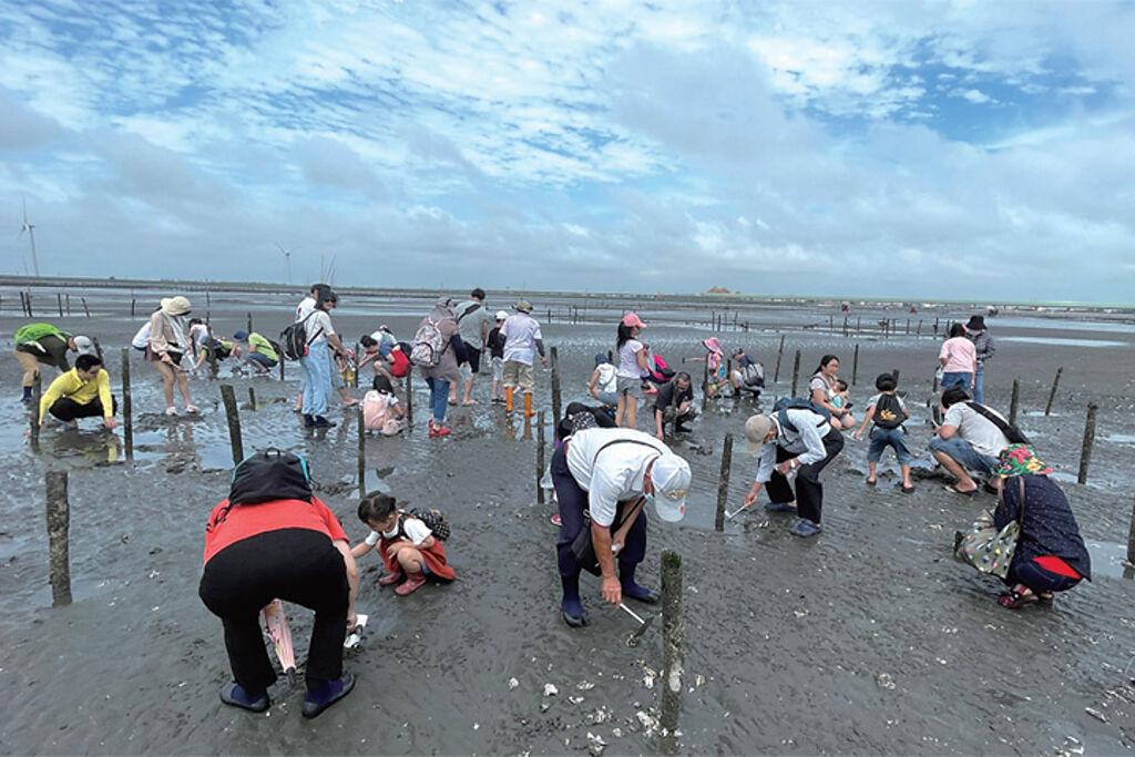 參與民眾體驗摸環文蛤的樂趣。 圖:中彰區域觀光聯盟╱提供