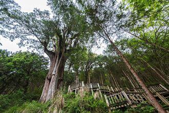 宜蘭小旅行深度探索山林秘境