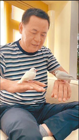 蔡振南當鳥爸 居家防疫每天玩親親