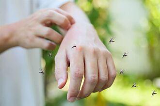 買驅蚊神器整天隨身戴著走 他曝驚人效果:沒再被蟲咬