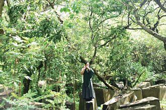 流動藝術饗宴《圓起》「自然 生活 音樂 心靈 森林 感受」
