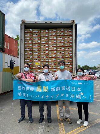 嘉義縣和牛業者協助 打貓合作社鳳梨出口到日本沖繩連鎖超市