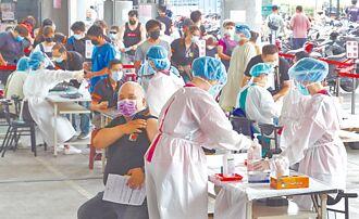 疫苗已到貨526萬劑  AZ、莫德納 混打有望