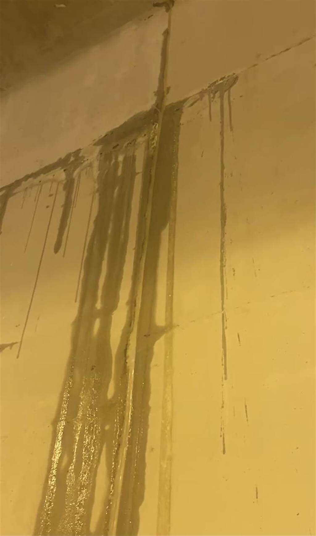 烟花颱風近日來襲,各地發生間歇性強降雨,剛完工不到1個月的淡水區「新民隧道」內竟不斷漏水,形成外頭下大雨,裡面也下起了小雨的窘況(市議員鄭宇恩服務處提供/戴上容新北傳真)