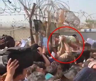 阿富汗婦女將嬰兒拋過鐵絲網 求英軍帶走:救救孩子