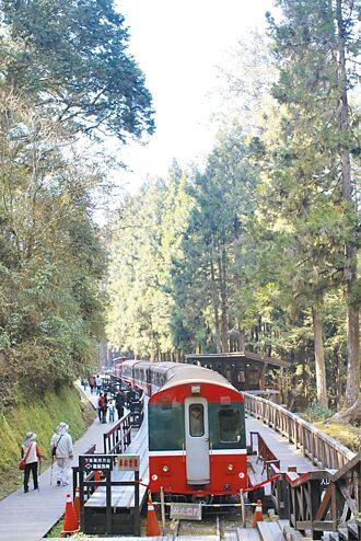 國旅沒起色 阿里山僅1成遊客回籠