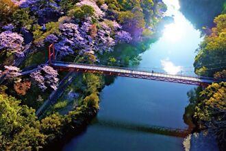 迎著太平洋的風!日本東三河單車騎遊路線新登場