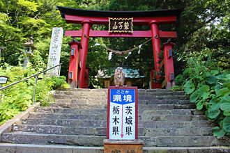 日本人超愛的打卡能量秘境  貓頭鷹神社求財「趣」