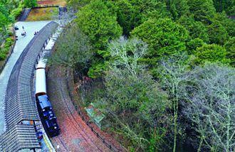 最熟悉的美景  阿里山林鐵全新LOGO傳遞旅運新視野